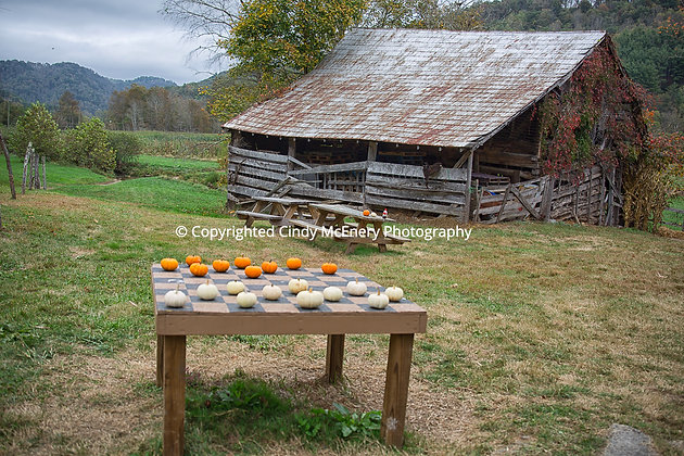 Fall #16 | Valle Crucis