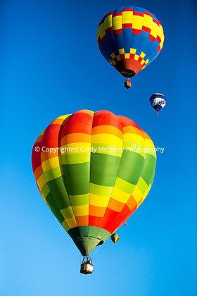 Balloon Festival #15