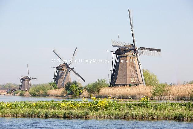 Kinderdijk Windmills #11