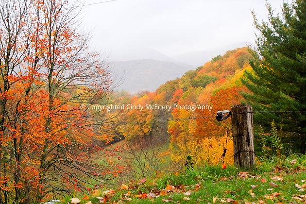 Fall #5 | Avery County