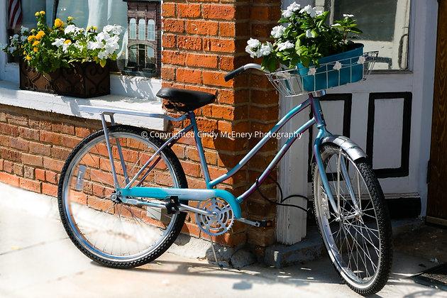 Old Fort Bike #2