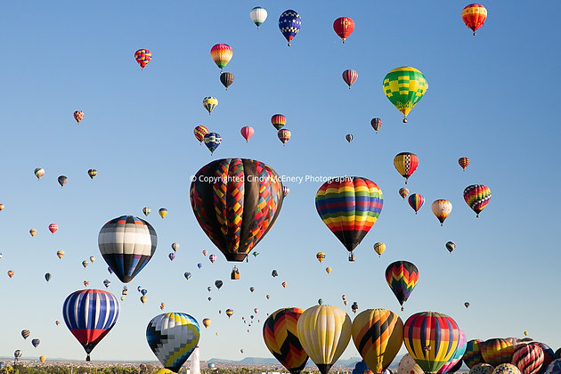 Balloon Festival #14