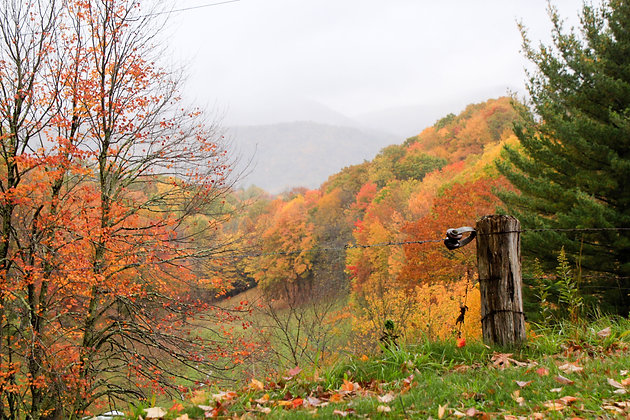 Fall In Avery County