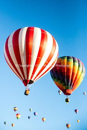 Balloon Festival #13
