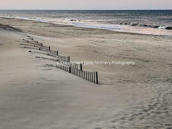 Fences in the Dunes