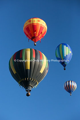 Balloon Festival #9