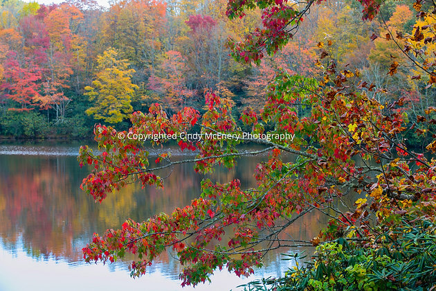 Fall Parkway #11