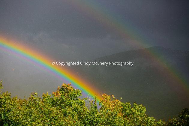 Rainbow #2 | Banner Elk