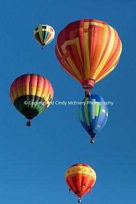 Balloon Festival #11
