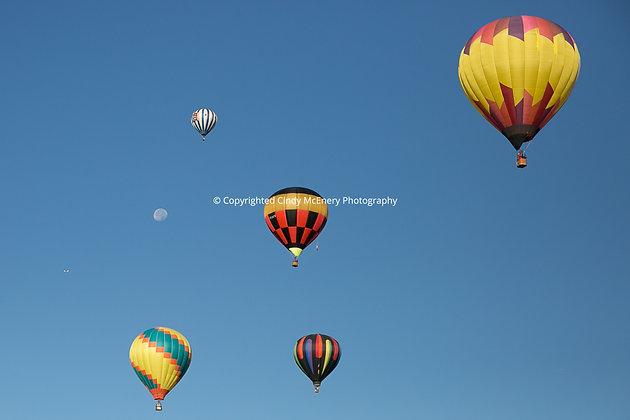 Balloon Festival #6