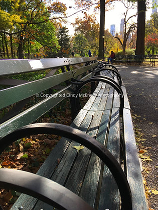 Park Bench | NYC
