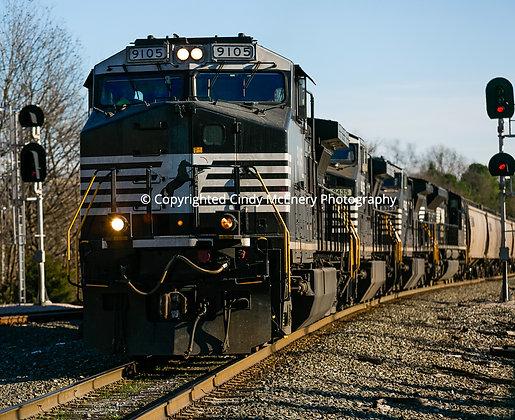 Raleigh Train