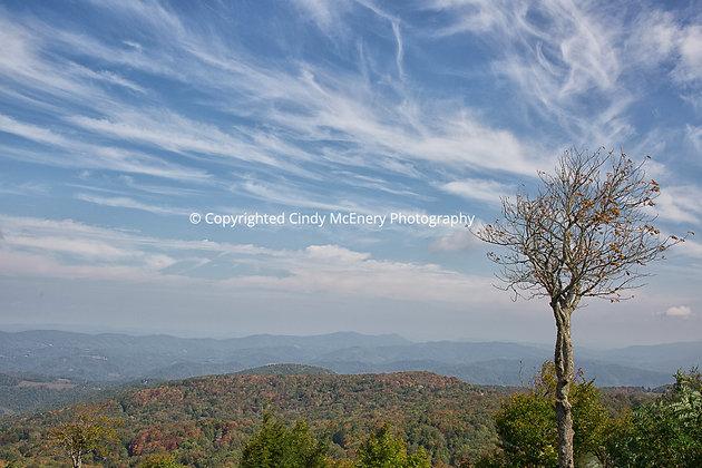 Fall #1 | Beech Mountain