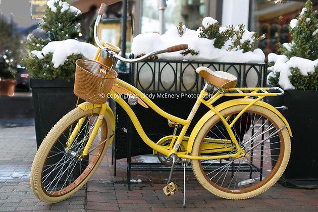 Vail Bike #6