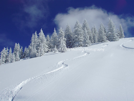 First Tracks | Vail