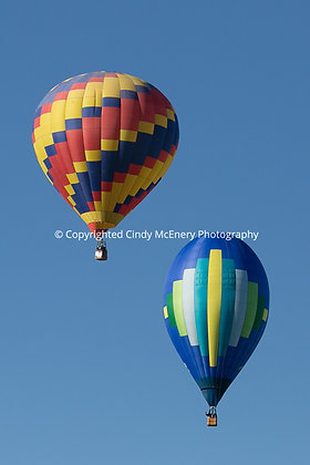 Balloon Festival #3