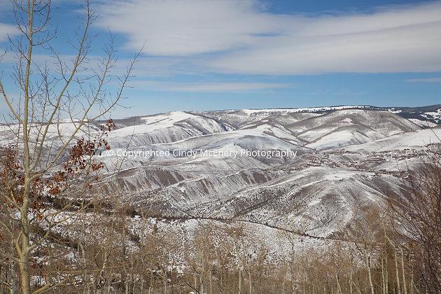 Colorado #12