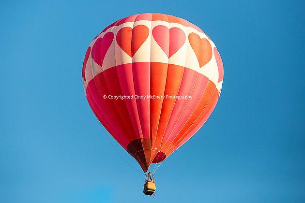 Balloon Festival #19