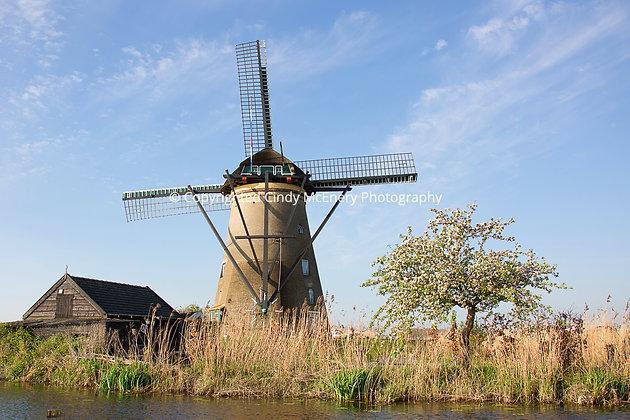Kinderdijk Windmills #3