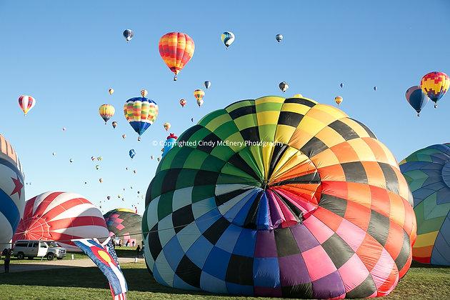 Balloon Festival #5