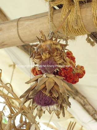 Colonial Williamsburg Flowers #1