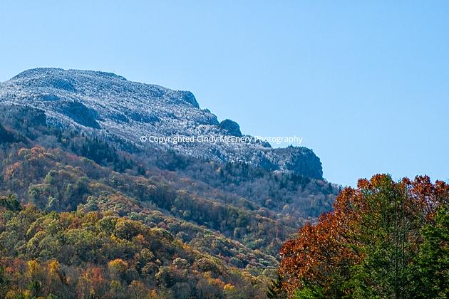 Grandfather Mountain #1