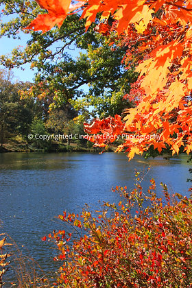 Fall Parkway #7