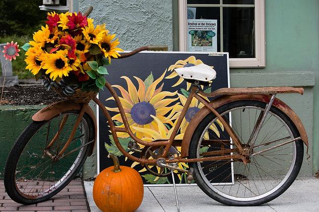 Fall Bike
