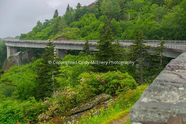 Viaduct #3