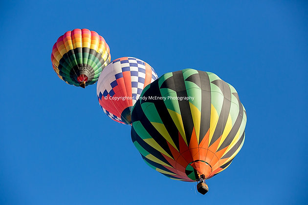Balloon Festival #10