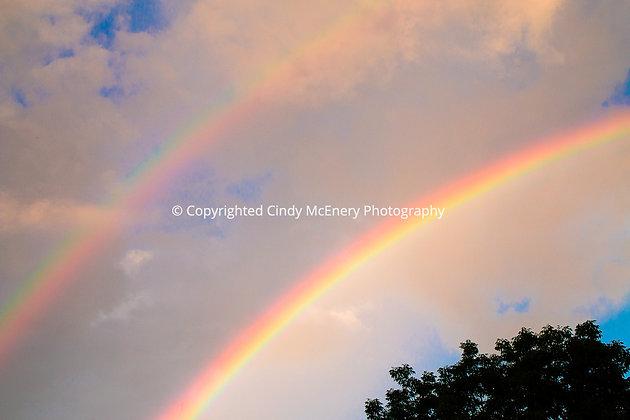 Rainbow #3 | Banner Elk
