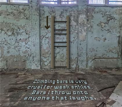 climbing bars.jpg