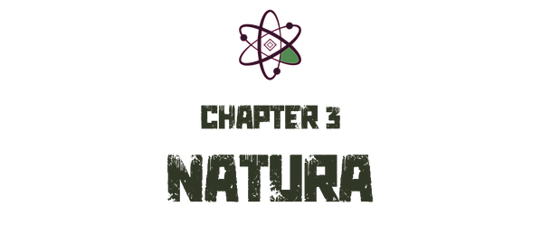 chapter3-natura.png