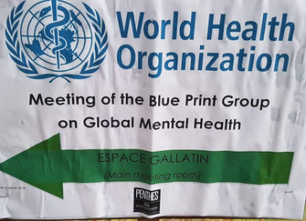 Fracarita International attended a meeting of the Blue Print Group for Global Mental Health in Genev