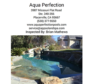Aqua Perfection Pool Inspection Face Pag