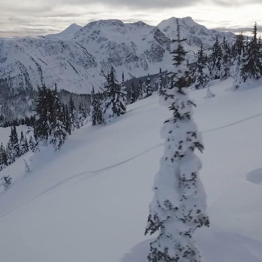 Ski touring in powder