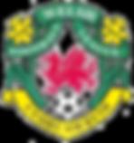 Welsh_football_league_logo.png