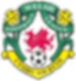 Welsh_football_league_logo.png