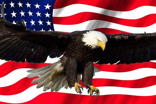 Printed Auto Tag - American Flag and Bald Eagle