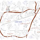 Cudham Woods Investigator Trail