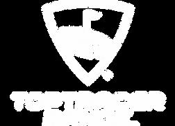 Texture_Toptracer_Logo_Colour.webp