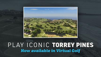 Torrey Pines.jpg