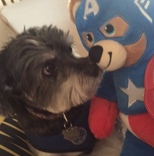 James with Captain Bear-erica