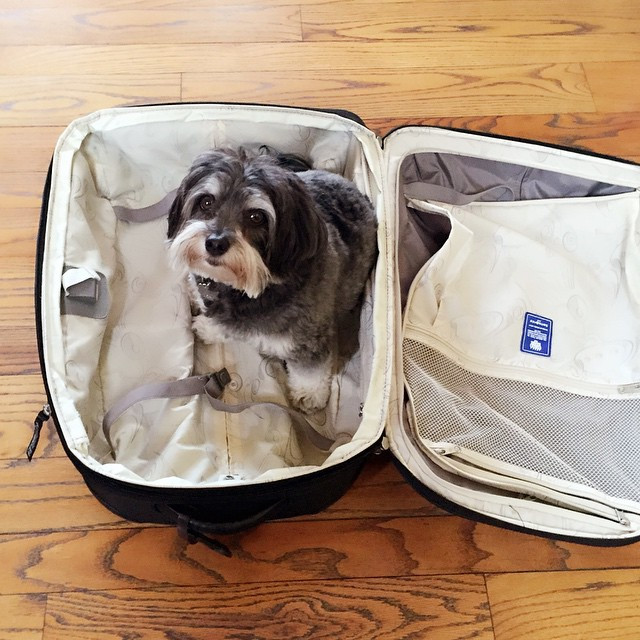 James not letting Ming-Na pack for her next trip