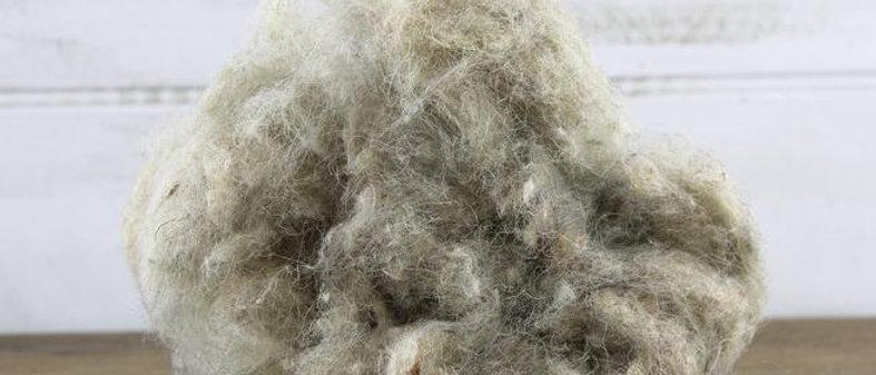 Wool Beanbag Filling