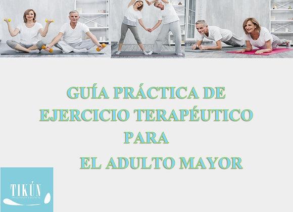 Guía Práctica de Fisioterapia