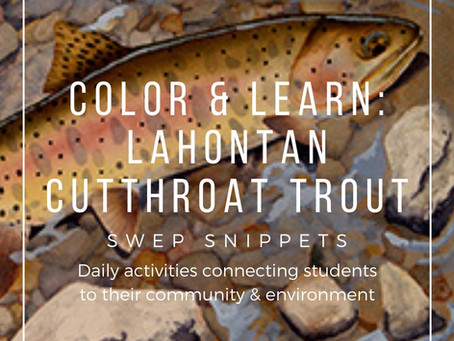 Color & Learn: Lahontan Cutthroat Trout
