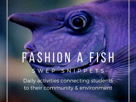 Fashion A Fish
