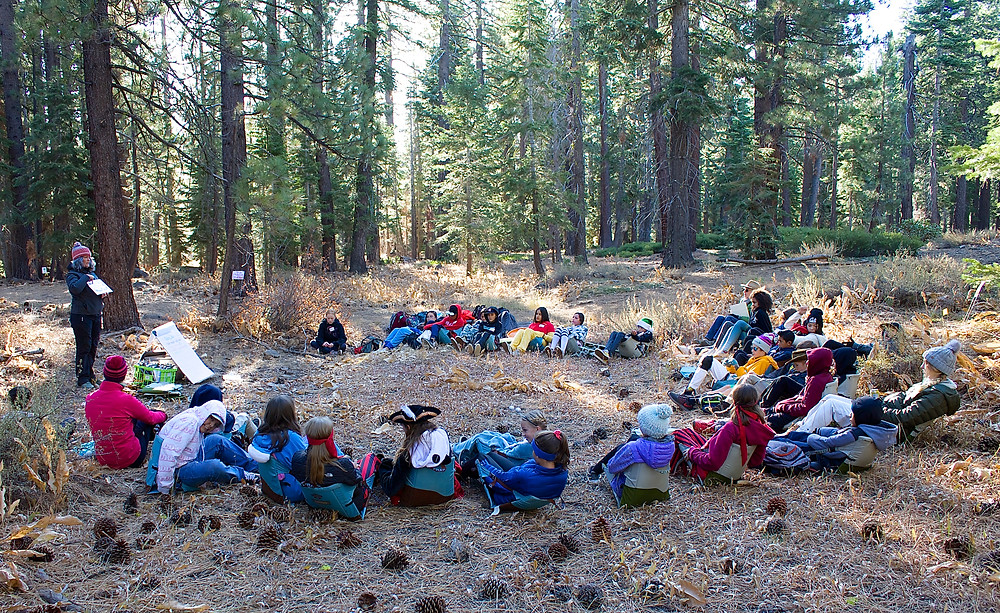 A group of students sitting in a circle in the woods