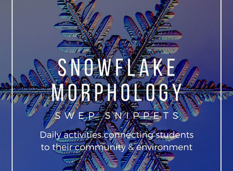 Snowflake Morphology